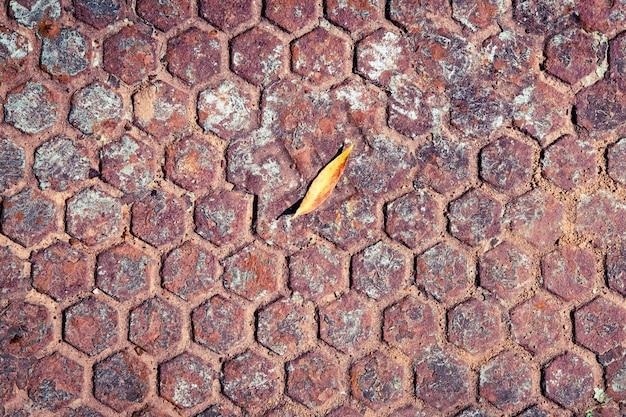 Autumn leaf on the rusty manhole.