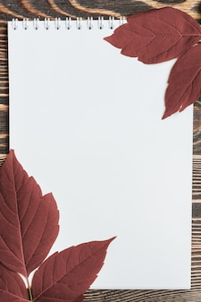 Autumn leaf with blank sheet on wooden table