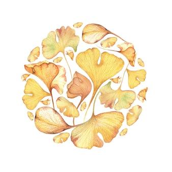 紅葉と果実の水彩手描きイラスト。秋のサークルイチョウ葉。
