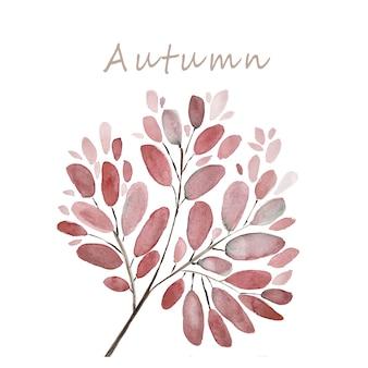 紅葉と枝の水彩イラストの背景。手描きの花の要素セット。水彩植物画。