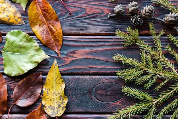 秋の紅葉とテキスト用のスペースと木製の背景にコーンと枝