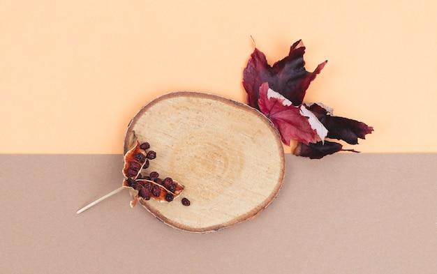 단풍과 따뜻한 색 바탕에 썰어 나무.