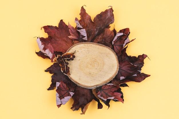 Осенние листья и нарезанное дерево, вид сверху