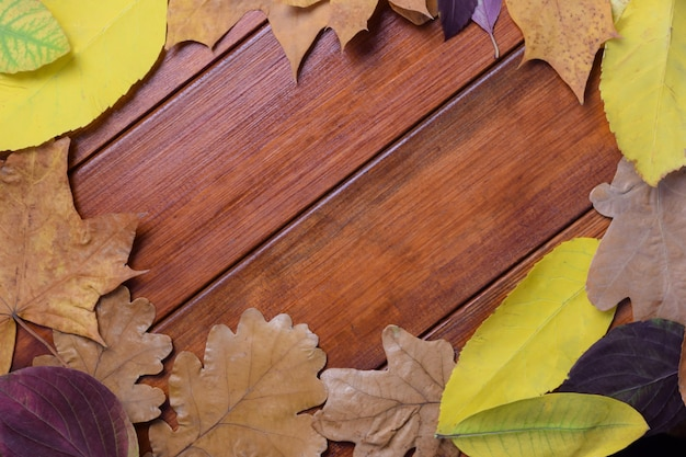 Autumn leaves are laid out in a circle on a brown wooden backgroundin the center there is an empty