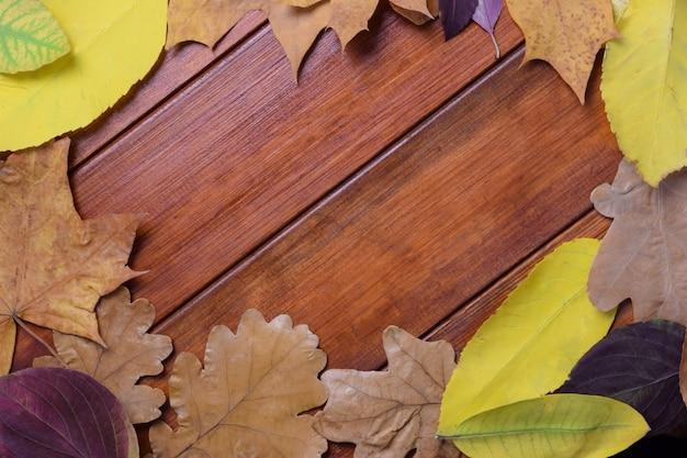 Осенние листья раскладываются по кругу на коричневом деревянном фоне, в центре - пустой