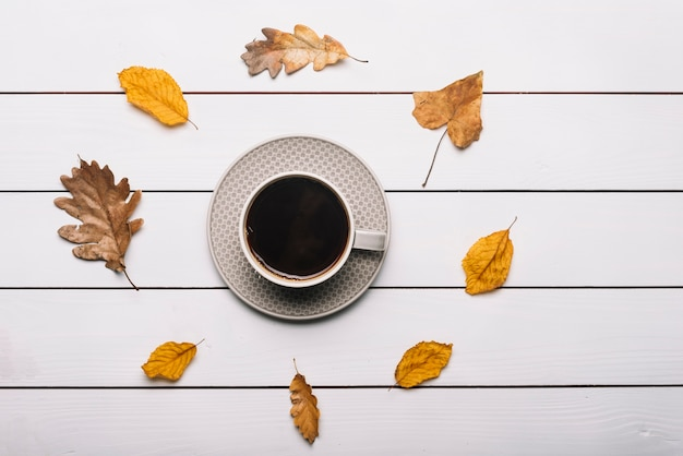 Autumn leaves around cup