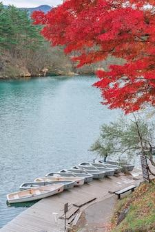 Осенние листья в госикинуме (пять вулканических озер или пять цветных озер), популярном месте в бандай хайлендс осенью в префектуре фукусима, япония.