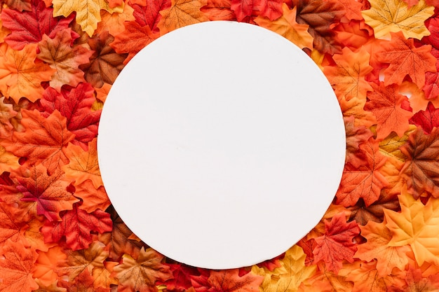 Autumn leaves background withround frame