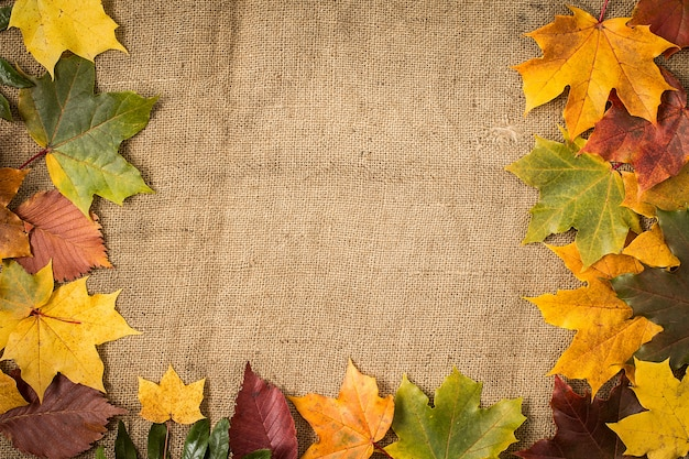 Autumn leaves over burlap surface