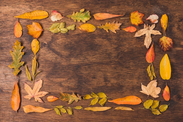 Autumn leaves double frame on wooden background