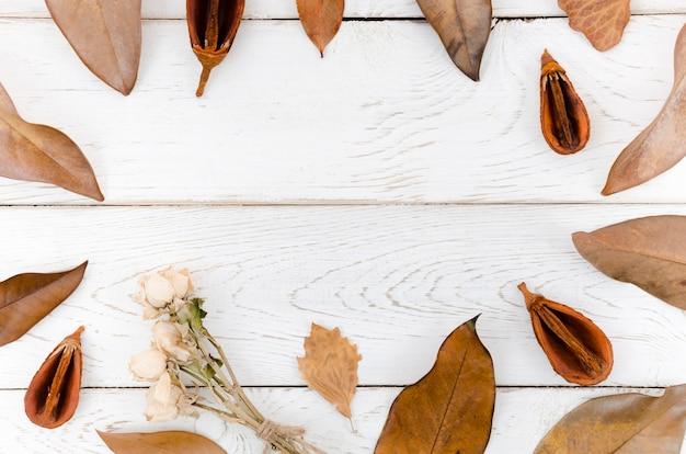 Осенние листья плоские лежал с копией пространства