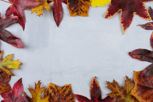 Autumn leaves frame backgrounds on gray textured background.