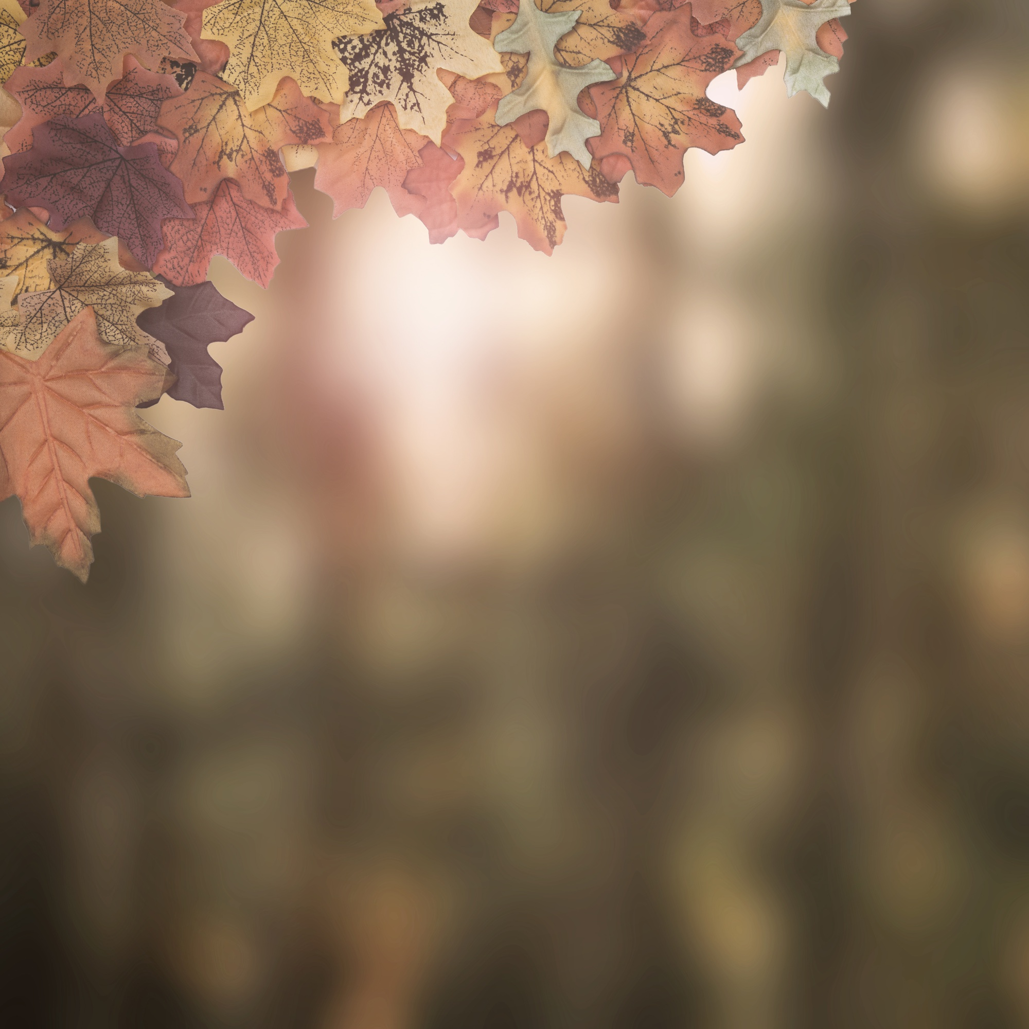 Autumn leaves frame designed on blurry background