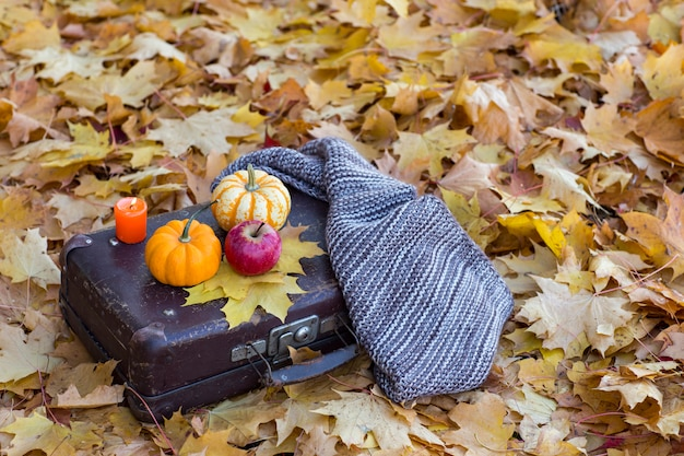 Autumn leaves on the ground, a suitcase is on them, two orange pumpkins, apple and scarf