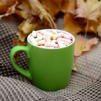 Autumn leaves and hot steaming cup of coffee lies on checkered plaid outdoors