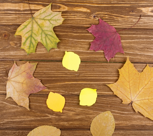 Autumn leaves and leaf-shaped paper stickers