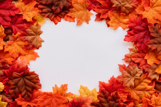 Autumn leaves in natural edges frame composition