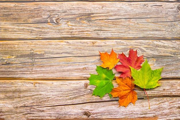 木製の背景に赤、黄、緑のカエデの紅葉。コピースペース付き