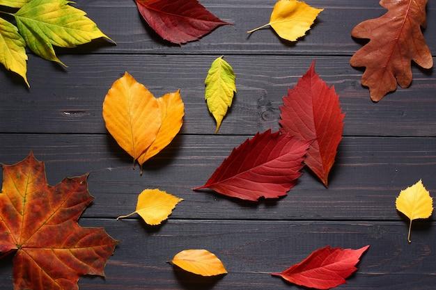 Осенние листья на черном фоне