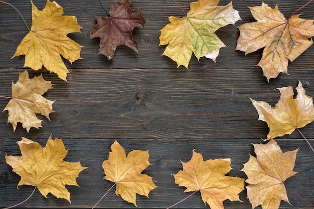 Осенние листья на деревянных фоне. заготовка для дизайнеров. шаблон. фон. макет