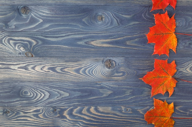 Woodeテーブルの上の紅葉