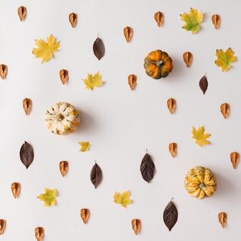 흰 벽에 호박과 단풍 패턴입니다. 평평하다.