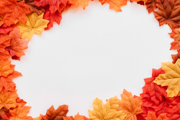 Autumn leaves in rounded frame composition