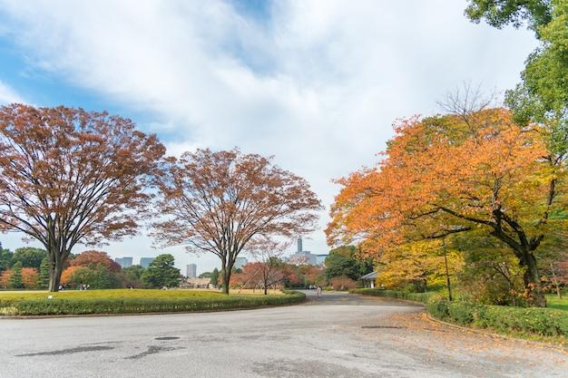 日本の日本庭園のある紅葉風景