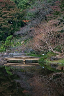 Autumn leaves scenery with japanese garden in japan