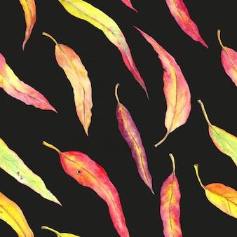 紅葉。黒の背景で秋のシームレスなパターン。水彩