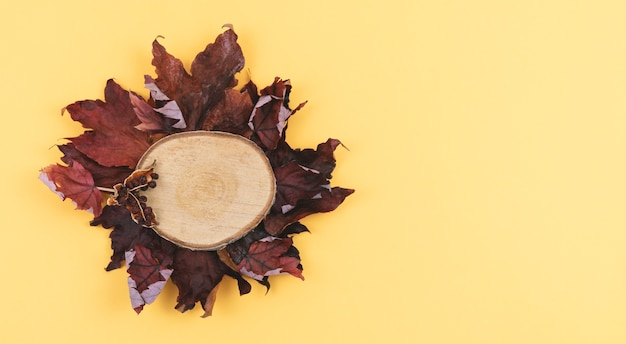 Autumn leaves and sliced wood on a warm coloured background. copy space.