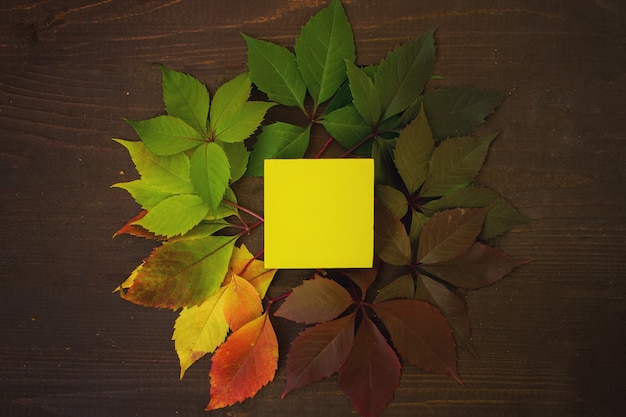 紅葉は緑から赤に変わり、木製の背景に黄色の四角があります。