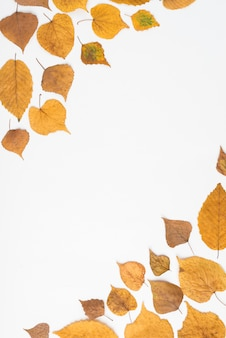 Autumn leaves in two corners