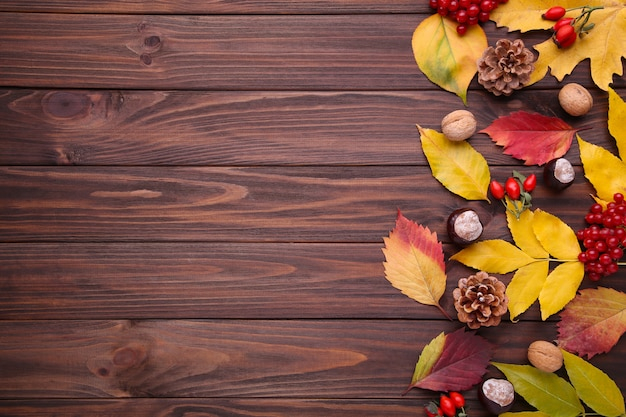 Autumn leaves with berries on a brown background