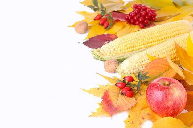 Autumn leaves with berries and vegetables