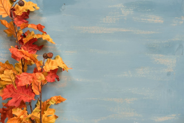 Autumn leaves with copy space