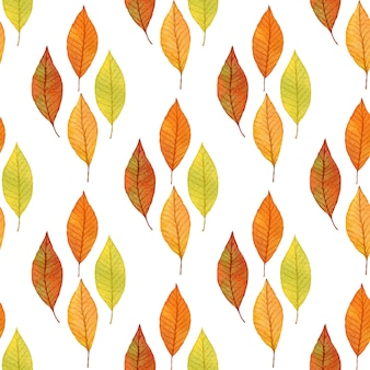 Autumn leaves with sketchy seamless pattern.