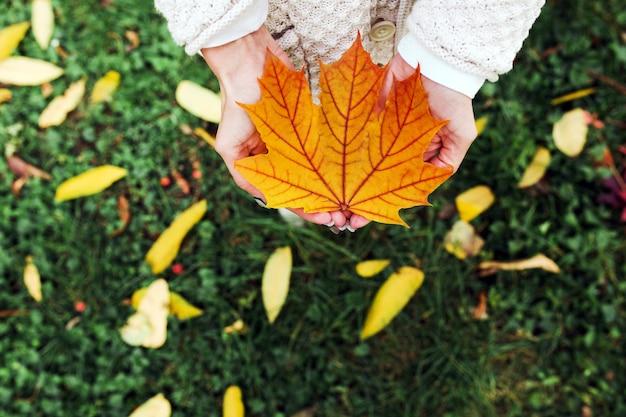 Foglie di autunno nelle mani della donna