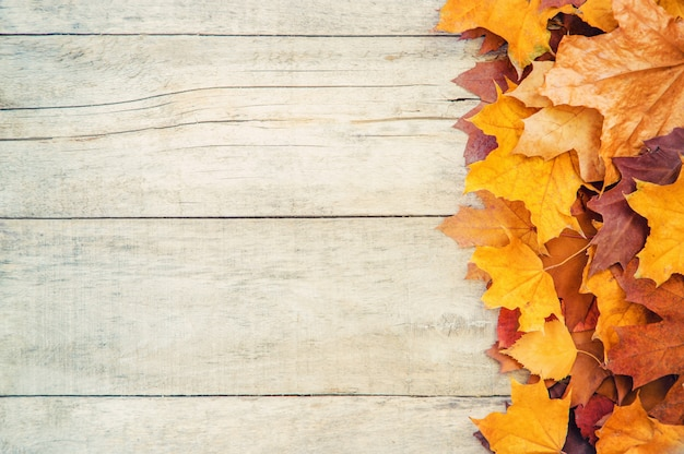 Autumn leaves on wooden background. selective focus