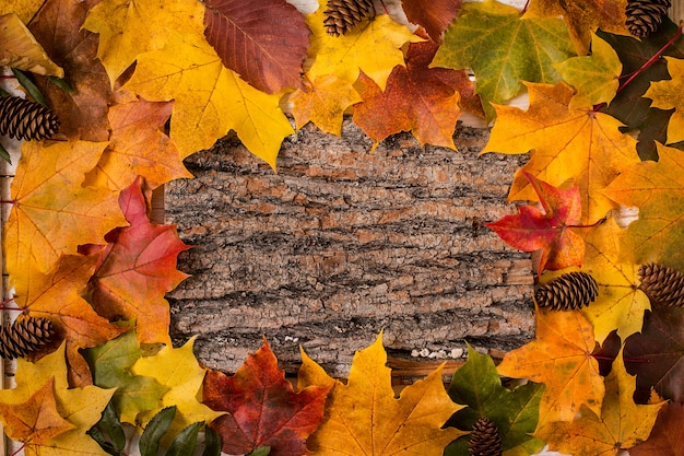 Autumn leaves over wooden surface. copy space