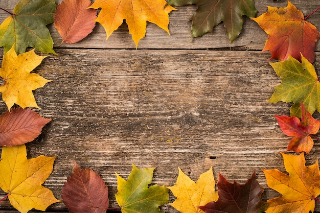 Autumn leaves over wooden surface with copy space
