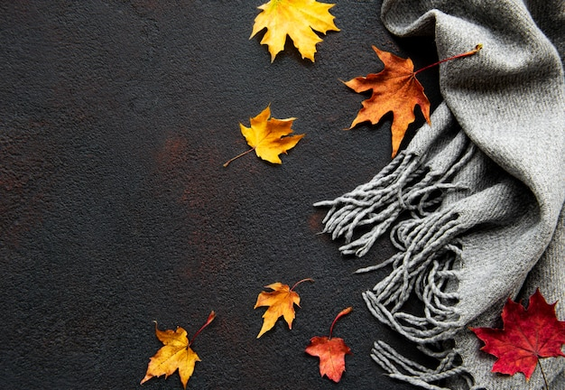 Осенние кленовые листья и шерстяной шарф на черном