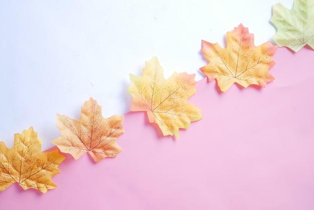 秋のカエデの葉は白い背景のトップダウンで分離