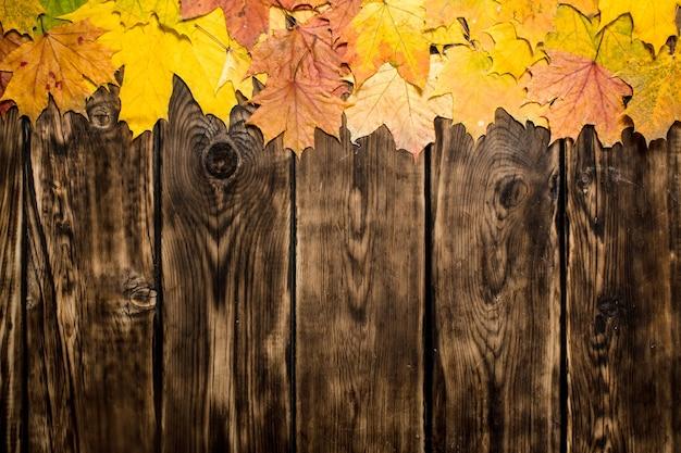 秋のカエデの葉。木製の背景に。