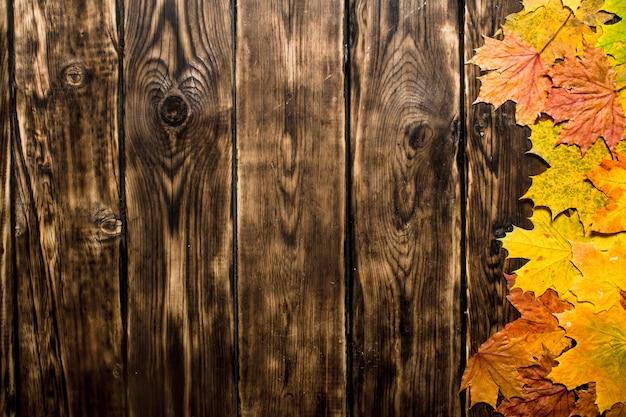 Осенние кленовые листья. на деревянном фоне.