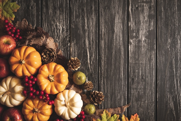 Autumn maple leaves with pumpkin and red berries on old wooden. thanksgiving concept.