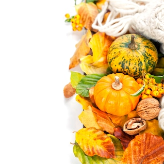 Autumn mini pumpkins, berries, nuts and leaves on white