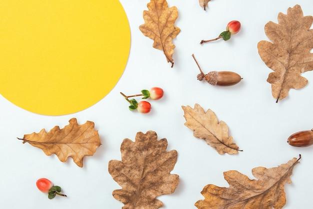 秋の最小限の構成。どんぐりの花輪、黄金のオークの葉、白い背景の上の赤いベリー。テキストの黄色い円フレームのモックアップ。白紙。フラットレイ、上面図、コピースペース。
