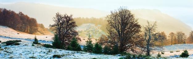 高原と田舎道(カルパティア山脈、ウクライナ)の畜産農場の秋の霧のかかった朝の山の景色。