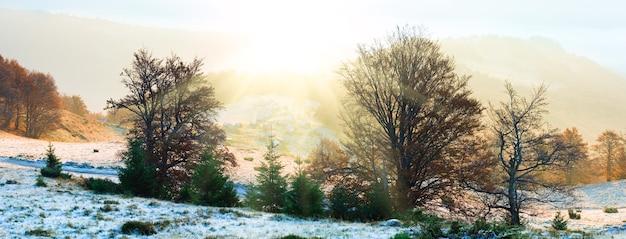 Осенний туманный утренний вид на горы животноводческой фермы на плато и проселочной дороге (карпаты, украина).